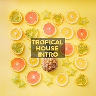 Tropical House Intro